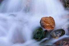Der rote Stein (mandel_roland) Tags: water creek wasser bach stein sandstein