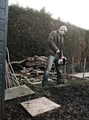 The Hedge (waynepilling) Tags: u2 chainsaw edge theedge petrol barbour stihl hedgecutter wapwaynepilling2016denisewillshandymanhedgewardscissorhandspgd700portraitsworkgardengardeninghedgecuttingtreechainsawdenwinterbarbour wapwaynepilling2016denisewillshandymanhedgewar