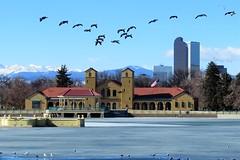 The Boathouse (Patricia Henschen) Tags: park winter mountains ice birds skyline clouds frozen colorado downtown denver boathouse citypark denvercolorado milehighcity