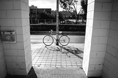 The pleasure of leaving work (fernando_gm) Tags: street shadow blackandwhite bw blancoynegro bike nikon bicicleta bici d7000