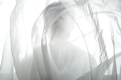 High Key (Rand0mmehere) Tags: white silhouette high key veil linnea highkey fotosondag albrechtsson fs160207 rand0mmehere