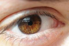 Italia (mrsjohnketta) Tags: iris macro eye closeup eyes nikon nikkor nomakeup d300 105mm