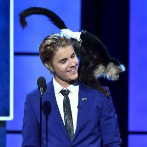 """""""Estúpido"""", diz entidade sobre Bieber querer adotar macaco novamente"""