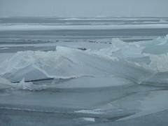 P1060222 (joepwezel) Tags: winter 2010 gouwzee