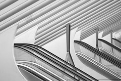 Escalator Insanity (nyanc) Tags: travel santiago blackandwhite bw abstract building monochrome lines station architecture prime blackwhite nikon belgium d stripes escalator shapes railway indoor structure architect insanity santiagocalatrava lige ligeguillemins d5200