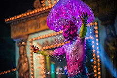 MarcosBPhoto_Carnaval2016_BodyMakeup_077 (Marcos Bolaños Photography) Tags: carnival girls art boys grancanaria body makeup canarias bodypaint carnaval canaryislands laspalmasdegrancanaria