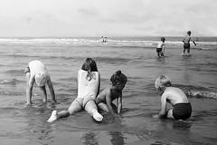 AAN ZEE 1965 -1968 - 002 (sipkefaber) Tags: zee strand kinderen jongeren gezinnen strandvermaak sixties zandvoort scheveningen depier strandtent vrienden vriendinnen meisjes paarden honden beach plage seasideresort pier jetée jeunesse youth children enfants lamer sea blackandwhite zwartwit noiretblanc