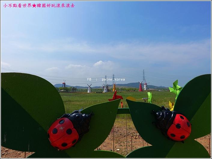 大阜島海邊香氣公園 (23).JPG