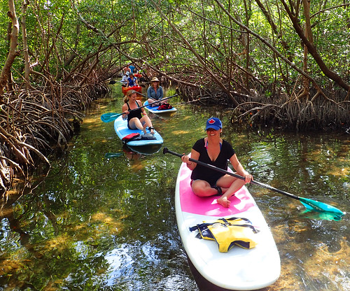 3_5_16 Kayak Paddleboard Tour Sarasota FL 13