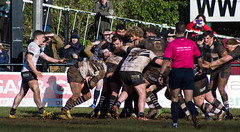 Pontypridd v Cross Keys #30 (PontyCyclops) Tags: road house club keys back football pain cross rugby centre union row full number half second hooker eight prop scrum maul pontypridd premiership winger rfc principality sardis ruck flanker