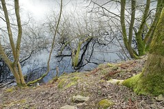 Lady bower Reservoir, Sheffield (Nabil AlSoufi) Tags: bridge sea england sky cliff lake flower tree green nature water leaves river lens landscape march waterfall afternoon power zoom dam south sheffield yorkshire samsung been reservoir clear compact ladybower 2016 nx 1650 nx500