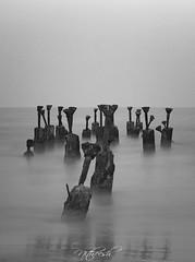 Remaining Few (Nitz_Foto) Tags: longexposure sunset beach canon 50mm evening kerala remains calicut kozhikode eos550d