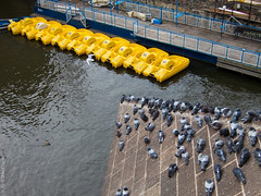 waiting (D-j-L) Tags: roof water birds yellow canon boats prague pigeons czechrepublic cz s100 hlavnmstopraha