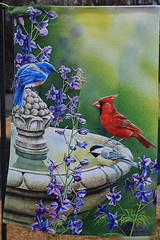 Birds at Feeder Flag (hbickel) Tags: birds canon cardinal flag pad birdfeeder bluejay photoaday malecardinal canont6i
