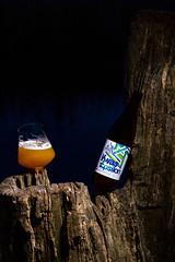 DSC_6472 (vermut22) Tags: beer bottle beers brewery birra piwo biere beerme beertime browar butelka