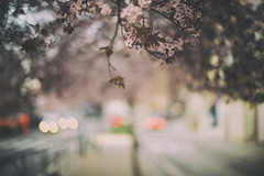 en esquinas que dan siempre a la calle (joaaglera) Tags: street light luz calle nikon dof bokeh streetphotography desenfoque nikkor callejero d610 50mmf14g
