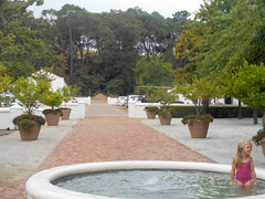 Swimming in the Fountain (RobW_) Tags: africa fountain swimming march estate wine south western cape warwick stellenbosch staurday 2016 05mar2016