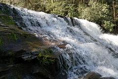 Third (Let Ideas Compete) Tags: sc rock creek waterfall moss slick whitewater stream southcarolina falls waterfalls brasstown mossy slippery oconee cascada oconeecounty sumternationalforest brasstownfalls