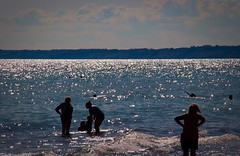 One Summer Dusk (Haytham M.) Tags: light summer sun lake beach water canon twinkle flicker 18200mm t4i seimming canont4i