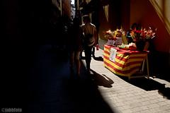 San Jordi (jabbfoto) Tags: barcelona abril rosa tradicin sanjordi piesta lumixdmclx5