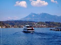 Slipping away (Cristina Rhode) Tags: blue lake nature water schweiz switzerland ship view suisse luzern svizzera lucerne lucerna mountans