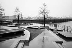 "german ""shitty weather"" in b&w (winne pu) Tags: bw monochrome rain architecture germany hamburg hafencity"