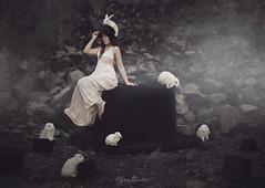 The Magician and the Rabbit (Marina Gondra) Tags: portrait woman white selfportrait rabbit bunny mystery dark alone dress wizard surrealism conejo fineart surreal conceptual mago magician marinagondra
