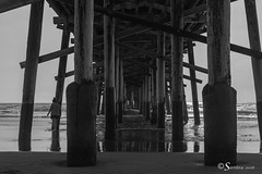 Small Waves Under the Pier (Serthra) Tags: ocean california sea blackandwhite seascape reflection beach water reflections pier blackwhite sand blackandwhitephotography canoneos5dmarkii canon5dmark2