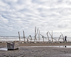 Photo Bombed (DASEye) Tags: newzealand signs beach sign clouds nikon cloudy overcast driftwood nz hokitika photobomb davidadamson photobombed daseye