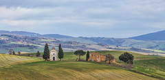 Hilltop in Tuscany  (Explored) (cheryl strahl) Tags: old winter italy house green church clouds countryside europe hill ngc cypress montepulciano rollinghills hilltop sanquiricodorcia lacappelladellamadonnadivitalita