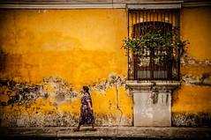 Strolling about, Antigua Guatemala (Simon van Ooijen) Tags: street travel people woman plants art broken window yellow wall america mexico photography nikon flickr maya guatemala belize central culture antigua tradition amerika vrouw muur reizen midden ooijen