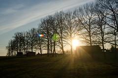 Coucher de soleil, Aveyron, Midi-Pyrnes (lyli12) Tags: nature landscape soleil nikon ciel flare paysage arbre couleur coucherdesoleil aveyron midipyrnes d7000