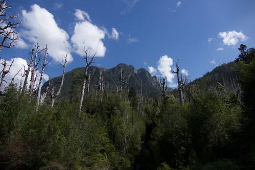 chile-patagonia-carretera-austral - 76