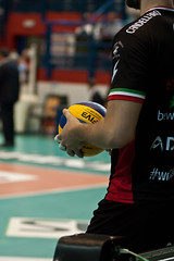 Candellaro_2 (Plus One +1) Tags: davide volley trentino playoff pallavolo 2016 seriea battuta scudetto molfetta legavolley exprivia palapoli superlega candellaro