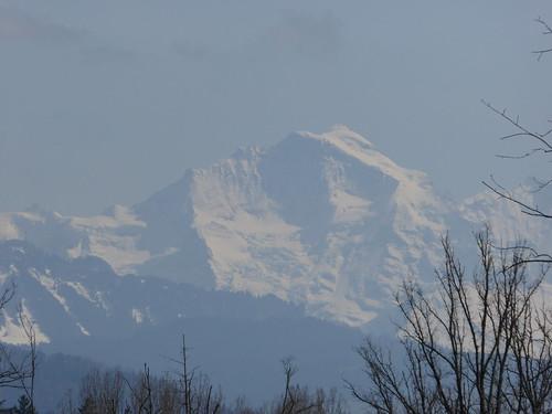 Jungfrau from Rubigen Aare-Bruecke