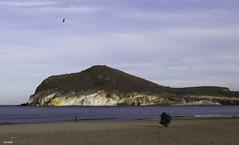Intimidaden paisaje abierto (jlpezrecio) Tags: beach nature happy freedom playa almera cabodegata