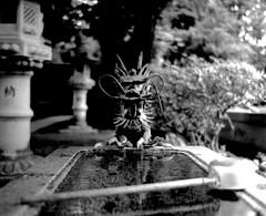 (fountain guardian) (Dinasty_Oomae) Tags: blackandwhite water monochrome blackwhite shrine dragon basin chiba   exakta ichikawa      ihagee  hiejinja exaktavarex     vx