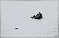 Lighthouse Rock (Jonathan Miske) Tags: ocean blackandwhite bw usa lighthouse seascape oregon canon landscape blackwhite seaside spring rocks day unitedstates hiking pacificocean pacificnorthwest oregoncoast cannonbeach ecolastatepark canon70200f4l canonef70200mmf4lisusm canon6d canoneos6d tillamookrocklight