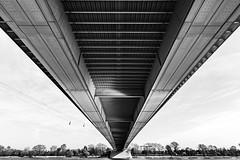 Bridge (Chris Dudek) Tags: city bridge urban bw white black river germany deutschland cologne kln schwarzweiss brcke fluss weiss schwarz