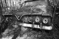 B&W Chevrolet (tvdflickr) Tags: old chevrolet monochrome digital georgia nikon antique rusty chevy junkyard automobiles decaying oldcarcity us411 whitegeorgia nikoncoolpixa coolpixa oldcarcitywhitegeorgia naturalconnectionsworkshops