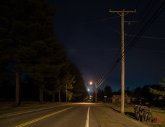 Lighting the Path (Mitymous) Tags: longexposure moon mist fog night moonlight tullylake spring2016