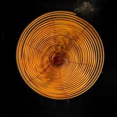 Spiraling Up (wawrus) Tags: incense spiral circle offering temple buddhist yellow tinhau hongkong hk china asia practice shumshuipo kowloon burn smoke square squareformat sony a7rii leica summicron 50mm pattern texture blackbackground round abstract