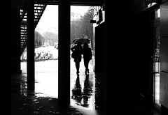 One umbrella for two (mkorolkov) Tags: street city people urban blackandwhite reflection building wet monochrome umbrella walking day walk streetphotography rainy stepping fujifilm xe1 xc50230