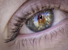 Eyes... The Window To The Soul (Fourteenfoottiger) Tags: iris people abstract colour macro reflection eye texture girl beauty lens eyes looking lashes eyelashes seeing soul stare staring soulful pupil reflects selfie windowtothesoul