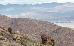 P.S.-16-287 (schmikeymikey1) Tags: cactus plants mountain windmill rock landscape bush path objects