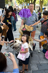 DSC_6034 (SleepingSeasons) Tags: street travel cats girl smile japan tokyo nikon asia child candid crowd streetphotography kitty excited kitties fullframe excitement pram childish pushchair d610 jingumae shibuyaku furrycats nikond610