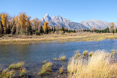The Snake River In The Grand Tetons (Robert F. Carter) Tags: mountain mountains river rivers snakeriver teton tetons thetetons grandtetonnationalpark nationalpark nationalparks schwabacherslanding schwabacherlanding mountainscape crookedtreeartscenter crookedtreephotographicsociety petoskeyphotographyclub petoskeycameraclub ourbeautifulworld passiton robertcarterphotographycom ©robertcarter ngc
