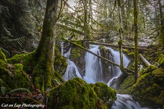 In Search of Snow (Cat on Lap Photography) Tags: bc rustic vancouverisland waterfalls provincialparks insearchofsnow catonlapphotography