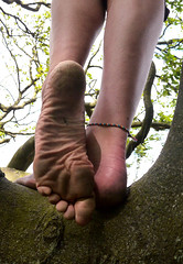 Tree sole (Barefoot Adventurer) Tags: nature leather toes natural earth barefoot barefeet soles treeroots anklet barefooted earthing barfuss barefooting barefoothiking strongfeet barefooter baresoles leathersoles toughsoles wrinkledsoles toespread earthsoles livingleather naturalsoles stainedsoles ruggedsoles earthstainedsoles