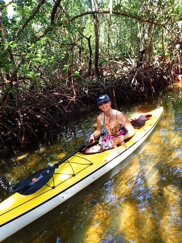1_1_16  paddleboard tour Lido Key Sarasota FL 13